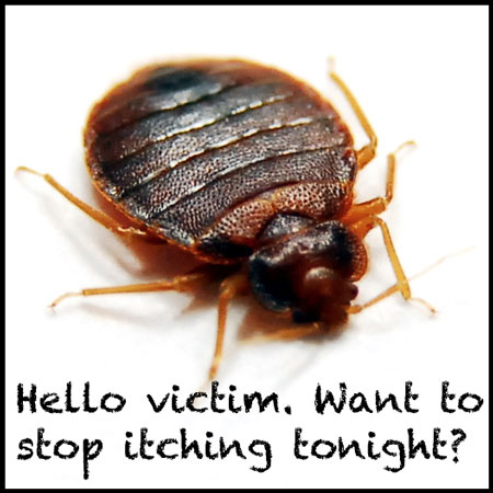 Hello Victim